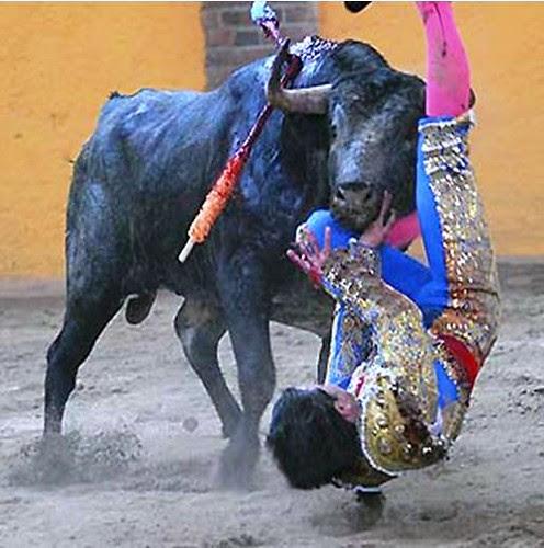 Cornada de Martín Campuzano en Arroyo