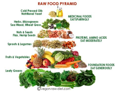 raw food diet plan      explained