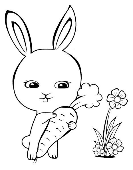gambar sketsa kelinci terbagus  mudah gambar mania
