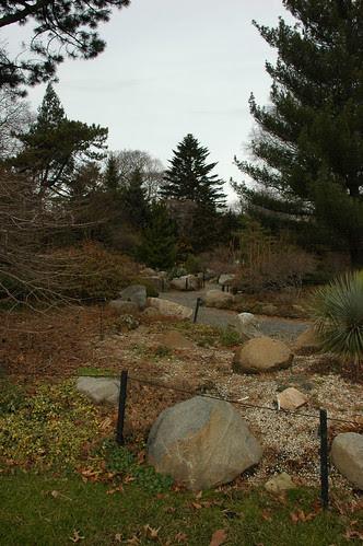 Rock Garden, Brooklyn Botanic Garden