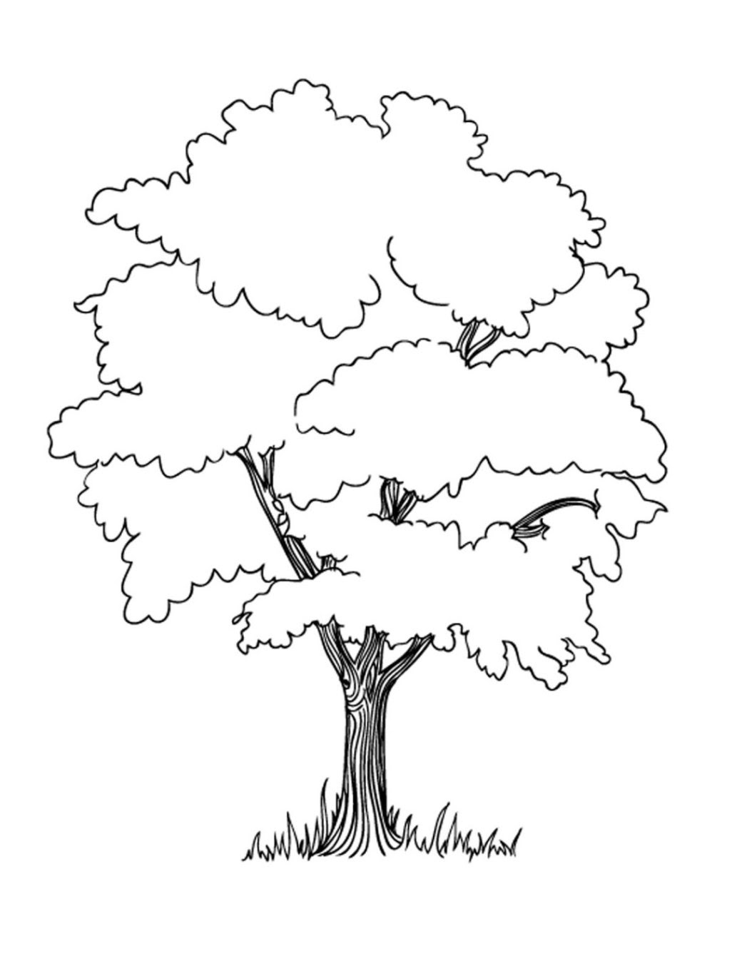 15    Malvorlage Baum Kostenlos