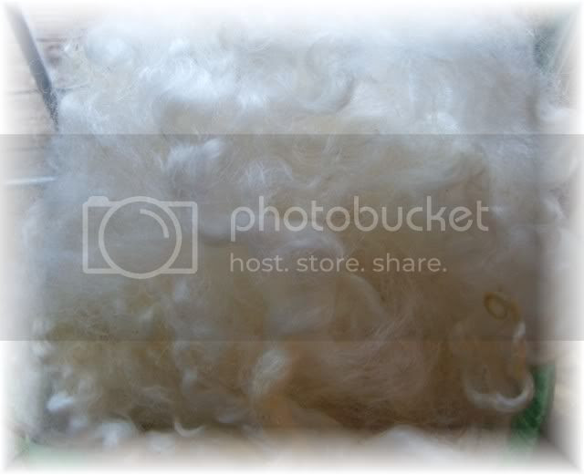 Cotwold Fleece ~ washed