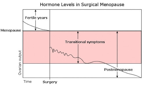 Is Pretty Important In Balancing Hrts Surgical Postmenopause The Difference Between Transitional Symptoms And Background Hormone Level Adequacy