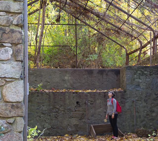 Hike_Cold_Spring_27.jpg