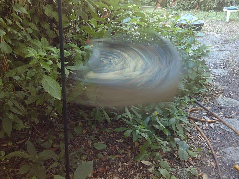 Webcam Spin