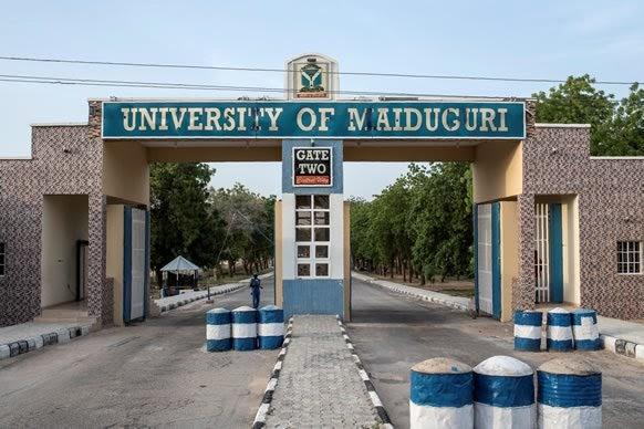 FG To Fence University Of Maiduguri With 64 Billion Naira