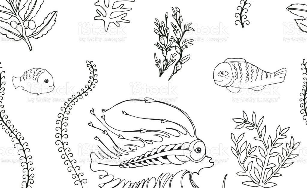 30 algen zum ausmalen - besten bilder von ausmalbilder