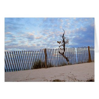 Dusk at Jupiter Beach Greeting Card