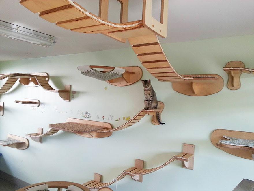 moveis-para-gatos-30