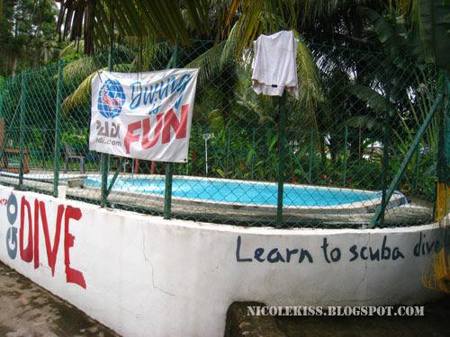 B&J dive pool