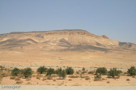 Photo - Le désert syrien