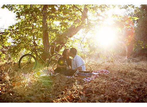 sun picnic