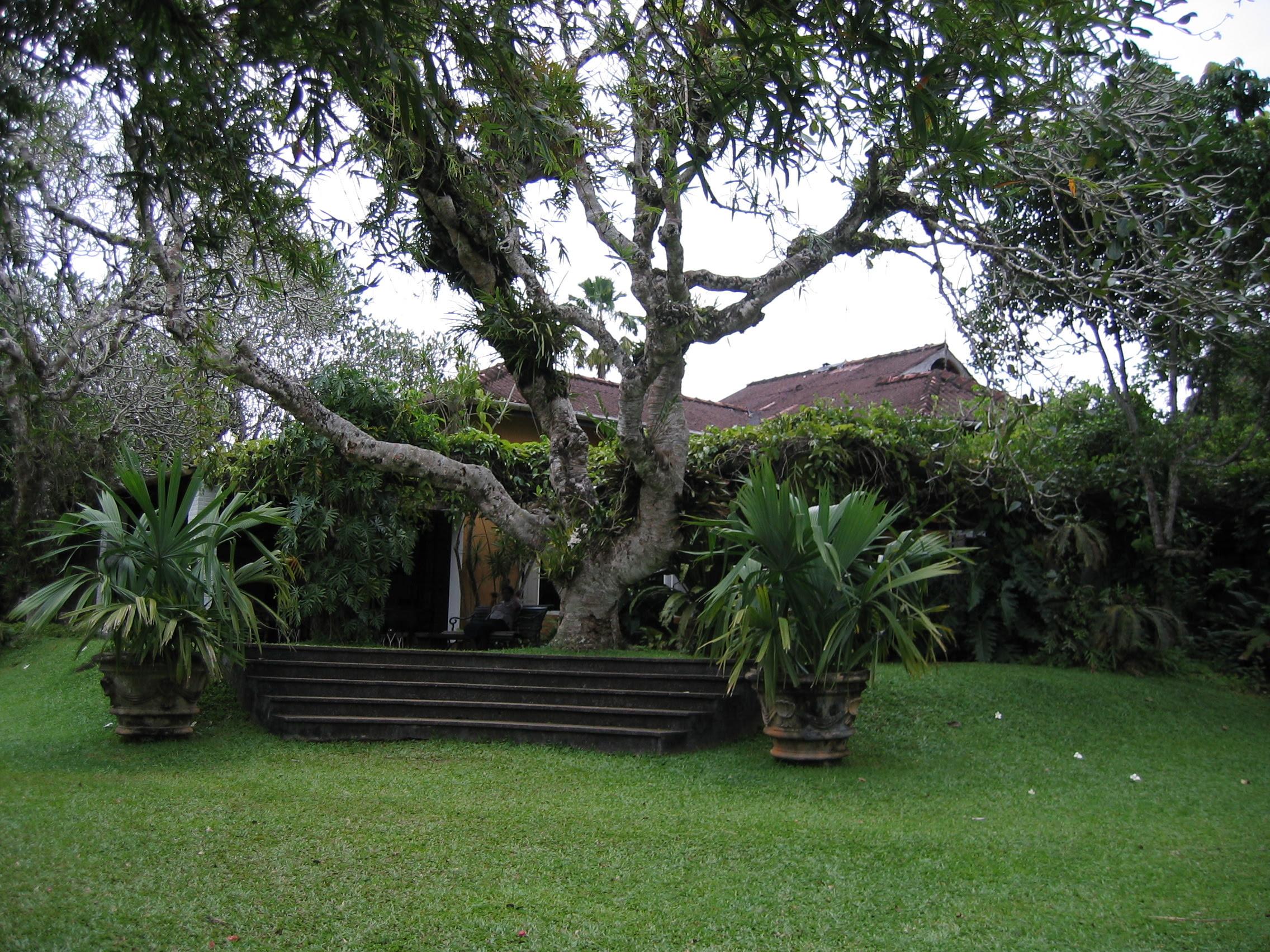 garden design pictures sri lanka perfect home and garden