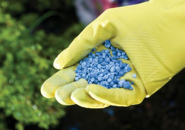 fertilizzanti