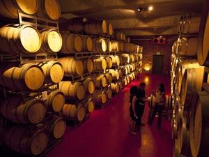 Horácio Barros em vinícola argentina, varginha (Foto: Pedro Henrique Barros/Wine World Adventure)