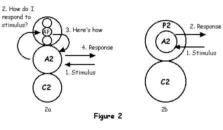 Ego models transactions