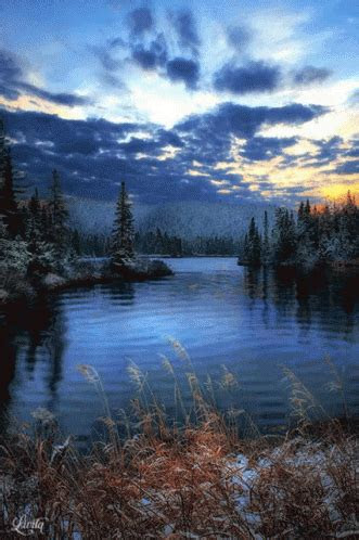 nature pond gif nature pond discover share gifs