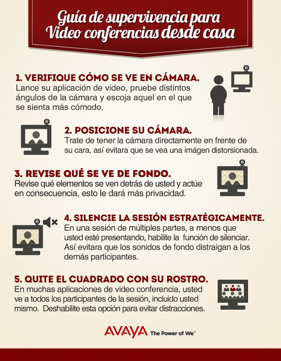 Infografías sobre videoconferencias