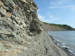 Joggins beach view