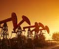crude_oilfield2
