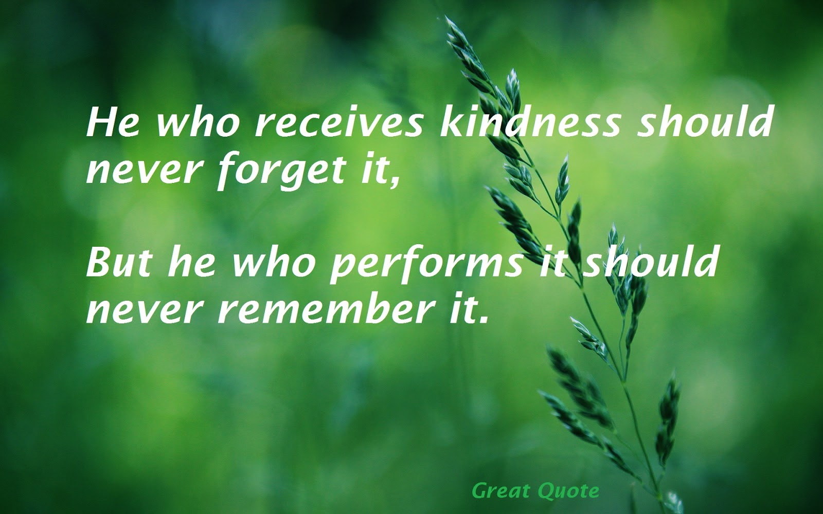 Famous Quotes On Kindness. QuotesGram