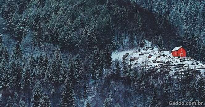 Casas solitárias para quem quer fugir dos problemas do mundo