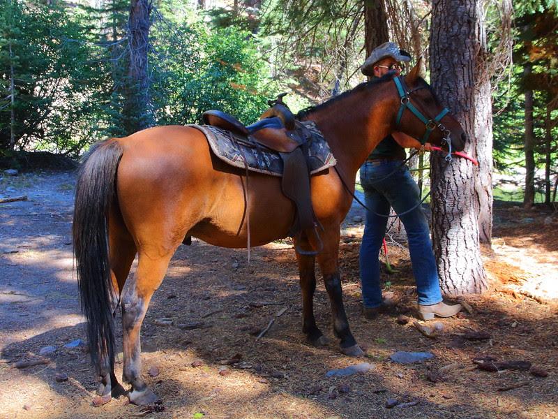 IMG_7783 Horseback Riding to Corral Meadow, Lassen Volcanic National Park