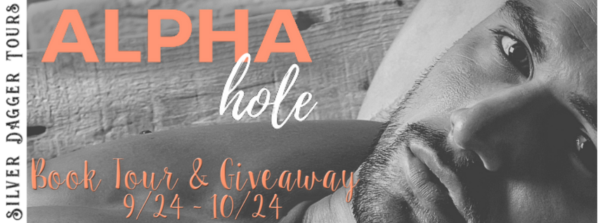 Book Tour Banner for contemporary romance Alphahole by DD Prince with a Book Tour Giveaway