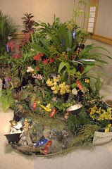 Carolina Orchids Display