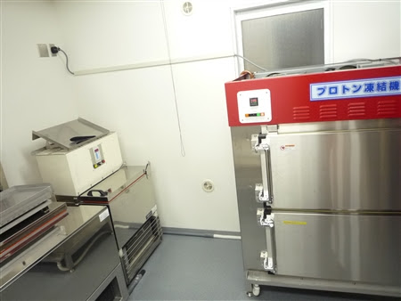showroom proton freezer