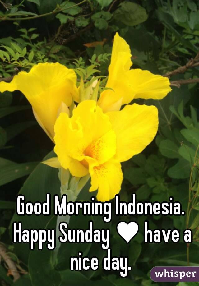 Good Morning Indonesia Happy Sunday Have A Nice Day