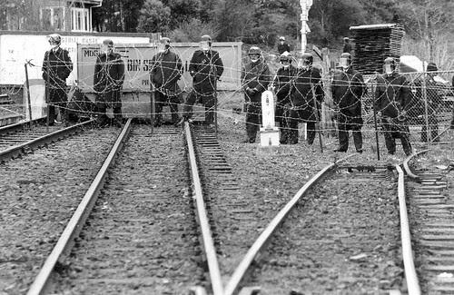 sandringham nz 1981