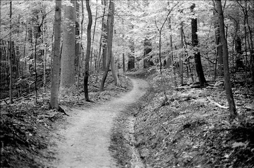 The Path IV