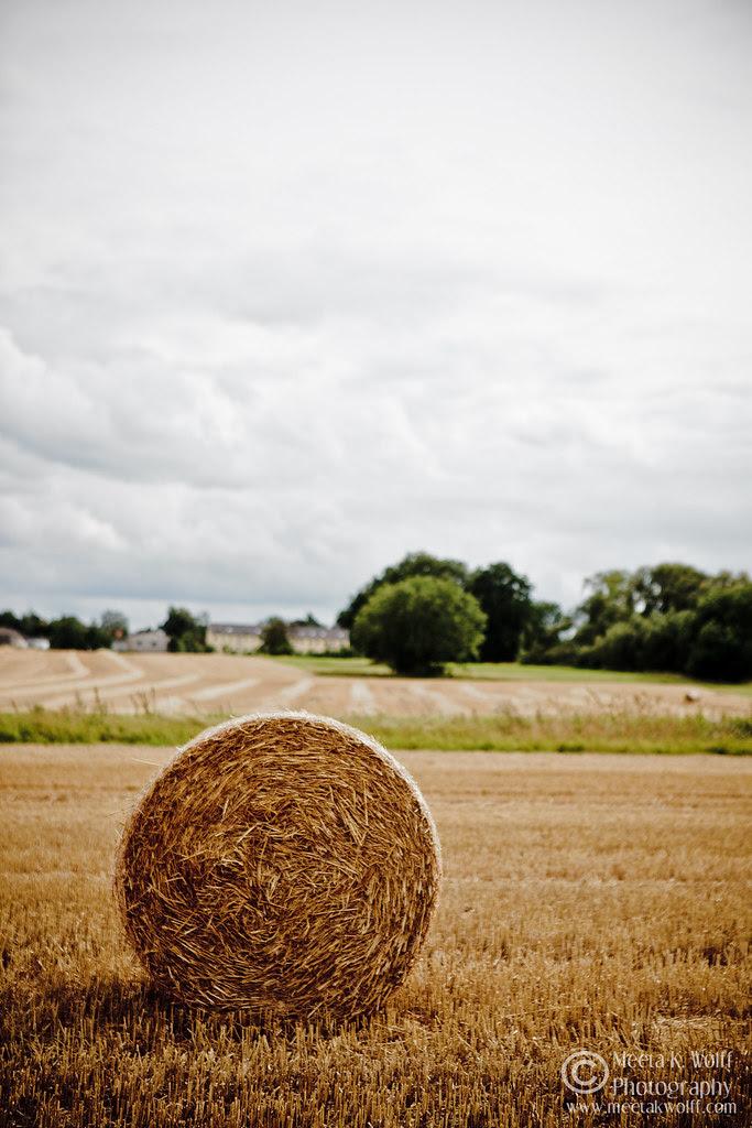 Hay Rolls by Meeta K. Wolff