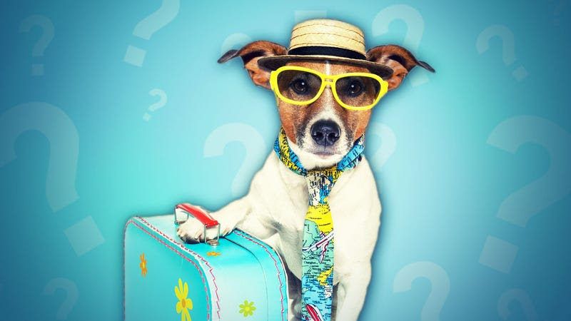 How Many Vacation Days Do You Get Each Year?