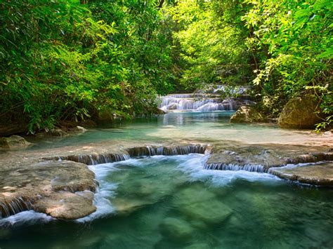 thailand tropical vegetation green river  waterfalls