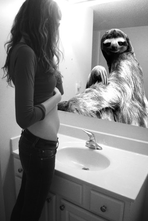 vans-supreme:  unpromise:  airfierce:  cassjaytuck:  walmart-stripper:  such a Strong picture…. really hits home . reblog If u care…. won't ruin your blog…  spit out my fruit snacks thanks  If you don't reblog this, you don't have a heart. So many people struggle with being sloths and we don't even know. Be kind to everyone, for everyone is fighting their own battles.  lmaoo  WOW