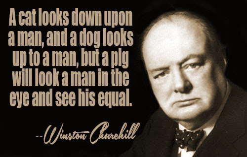 Image Result For Zitate Englisch Winston Churchill