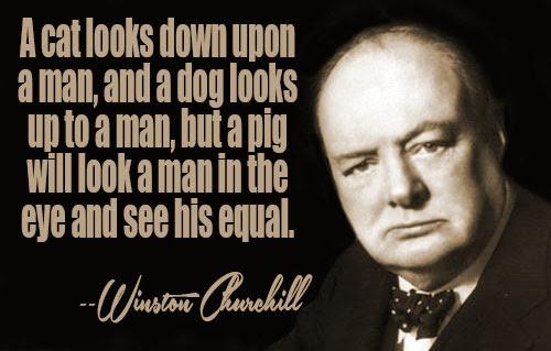 Zitate Englisch Winston Churchill Mut Zitate Weisheiten