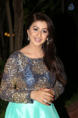 Nikki Galrani New Photos - 16 of 36