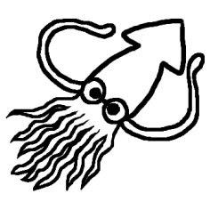 いかイカ1白黒海の動物生き物の無料イラストミニカット
