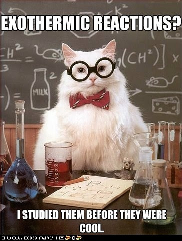 MemeCats: Hipster Chemistry Cat