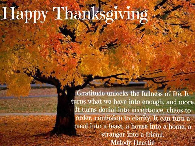 Happy Thanksgiving Gratitude Quote Pictures, Photos, and Images for Facebook, Tumblr, Pinterest