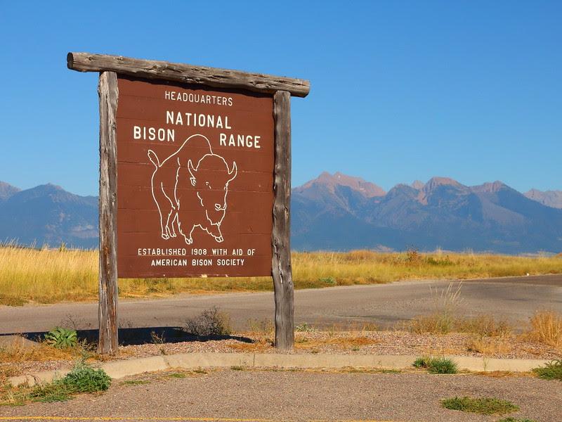 IMG_3819 National Bison Range