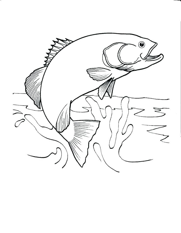 Outdoor Scene Coloring Pages at GetDrawings   Free download