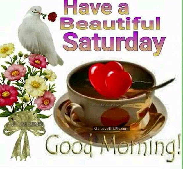 Have A Beautiful Saturday Good Morning Pictures Photos And Images