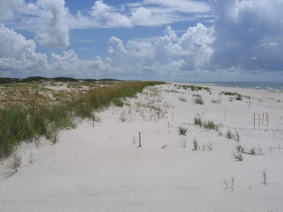 White sands worth preserving
