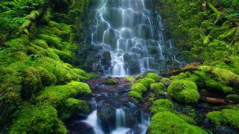 cascade waterfall sensoria rain forest costa rica mexico rocks green moss hd desktop wallpaper