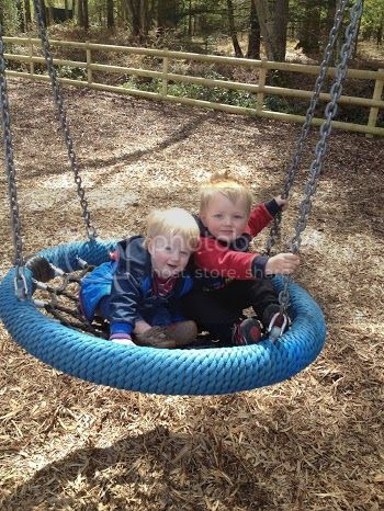 boys on a swing