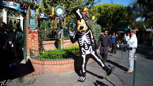 Disneyland Resort, Disneyland, Haunted Mansion, Holiday, Goofy, Halloween Time